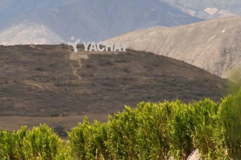 Imagen tomada de eluniverso.com
